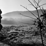 W pogoni za mgłą